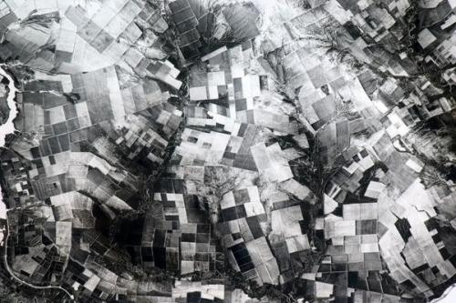 Crazed patchwork of farms in Central Asia, a monochromatic 3D hallucination in the snow.