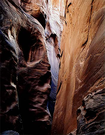 Eliot Porter Dungeon Canyon, Glen Canyon, Utah, August 29, 1961