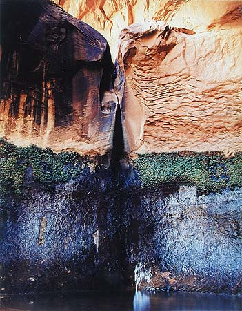 Eliot Porter. Plunge Pool, Cathedral in the Desert, Clear Creek Off Escalante River, Utah, August 23, 1964