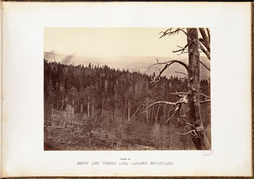 Andrew J. Russell. Snow and timber line, Laramie Mountains.