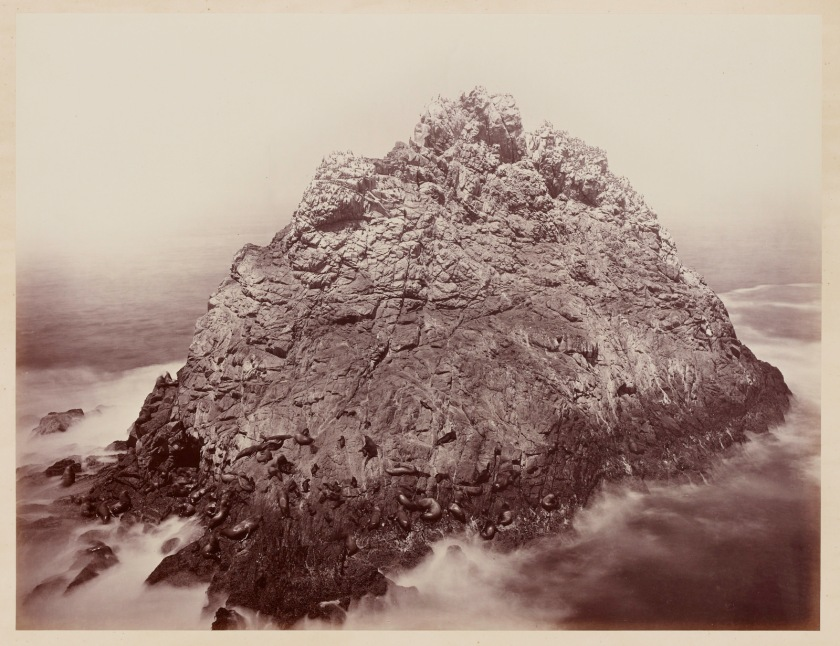 Carleton Watkins. Sugar Loaf Islands and Seal Rocks, Farallons, 1868–69.