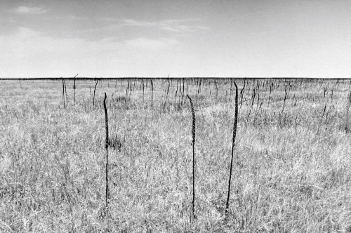 Drex Brooks, Ghost Dance Site in the Badlands, Pine Ridge Reservation, South Dakota, from the series Sweet Medicine, 1989