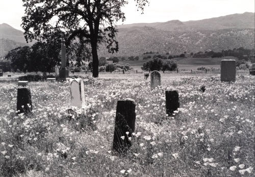 Pirkle Jones. Monticello Cemetery, from the series Death of a Valley, 1956, printed 1960.